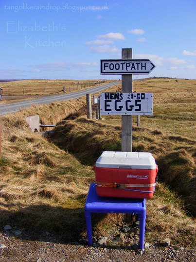 hens-eggs-for-sale