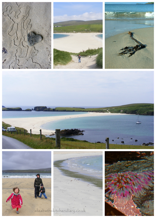 st ninians beach collage