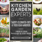 Kitchen Garden Experts by Cinead McTernan