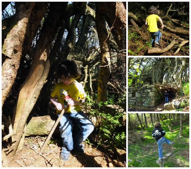 exploring Kergord Woods