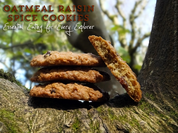 oatmeal raisin spice cookies
