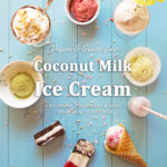 Coconut Milk Ice Cream by Aimee Ryan: Review, Mayan Chocolate Recipe & Giveaway