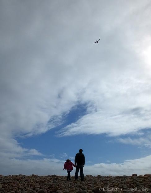 Tirricks on Braewick Beach