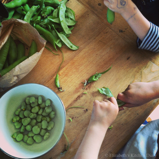 Shelling Broad Beans by Elizabeth's Kitchen Diary