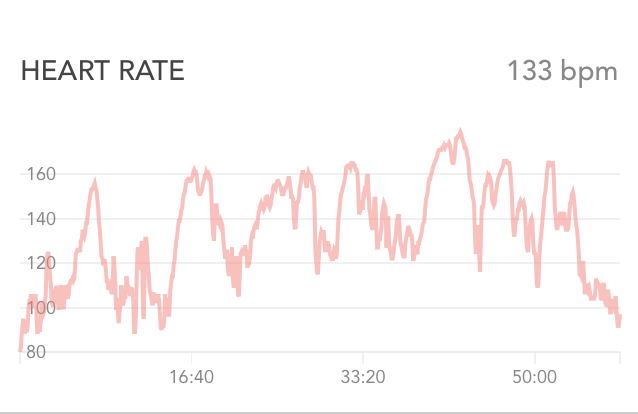 p90x core synergistics heart rate