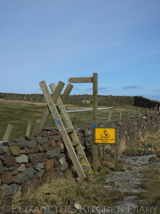 Access Shetland stile