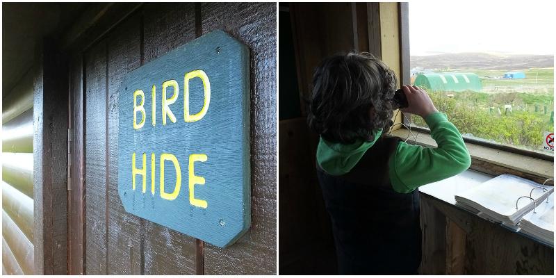 Bird Hide at Michaelswood
