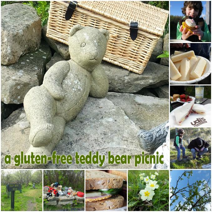 Gluten Free Teddy Bear Picnic
