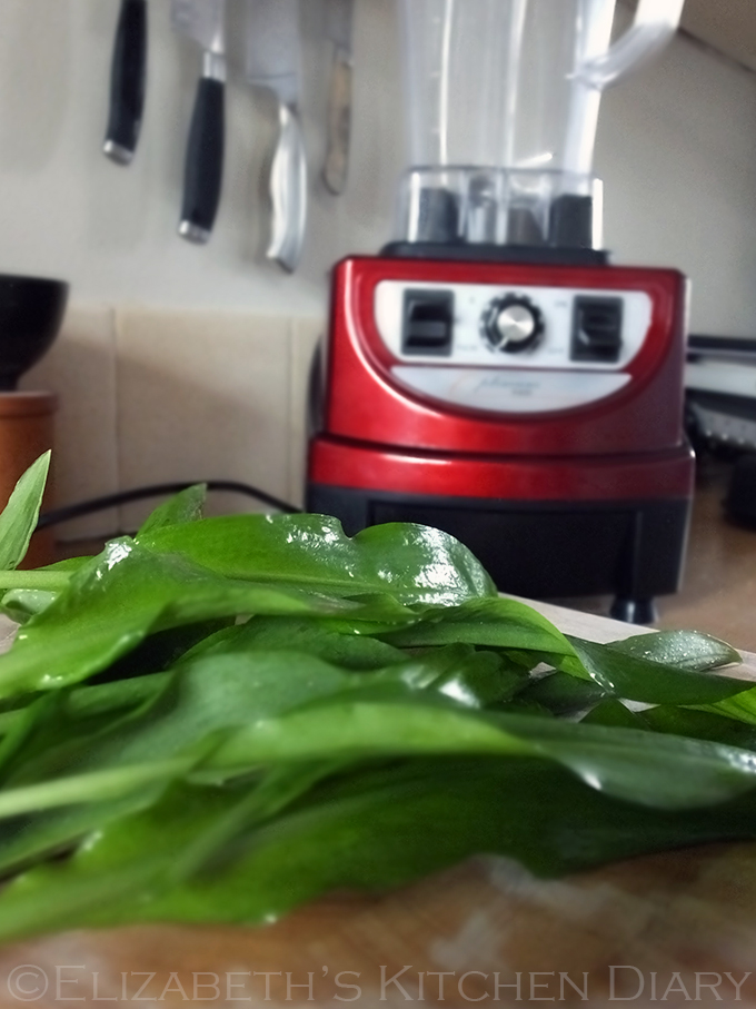 Wild Garlic Optimum Blender
