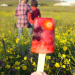 Fruity Lemonade Ice Lollies