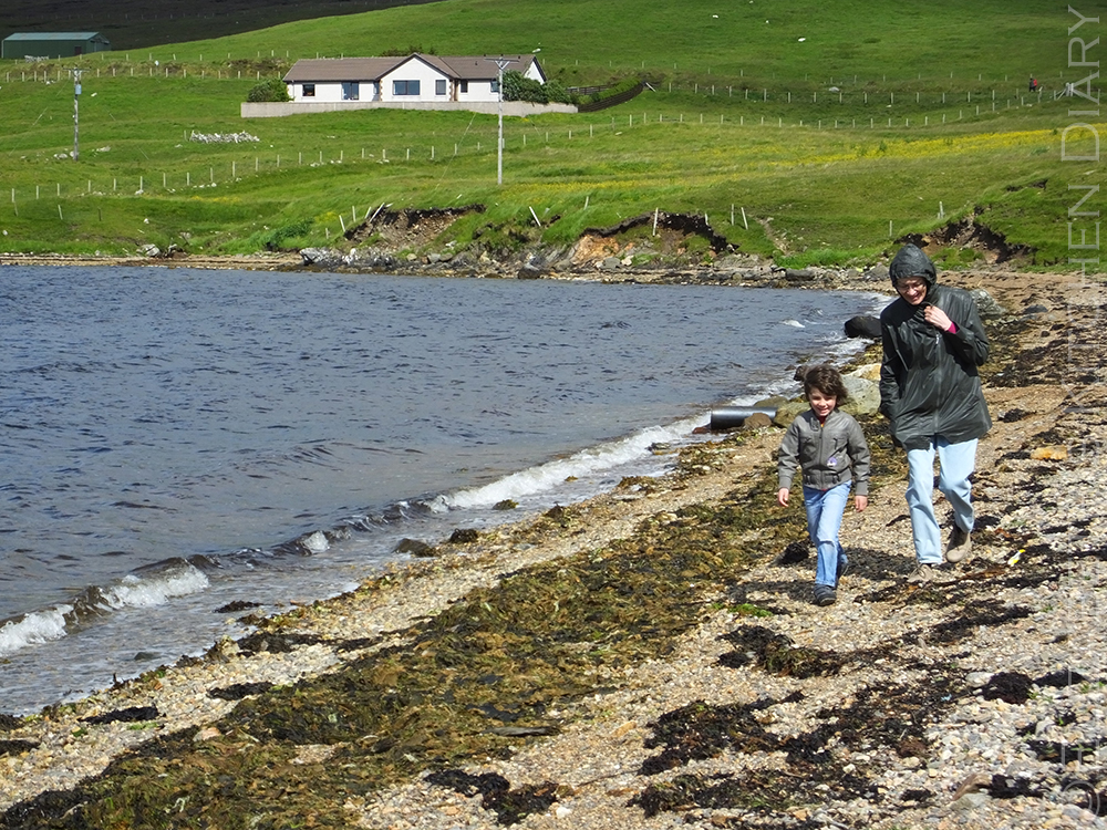Shetland beach walk