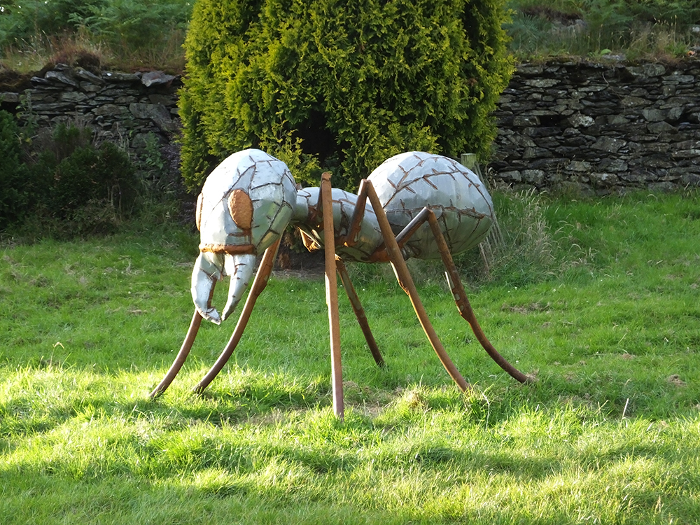 Grizedale Campsite - Giant Prodigy Ant