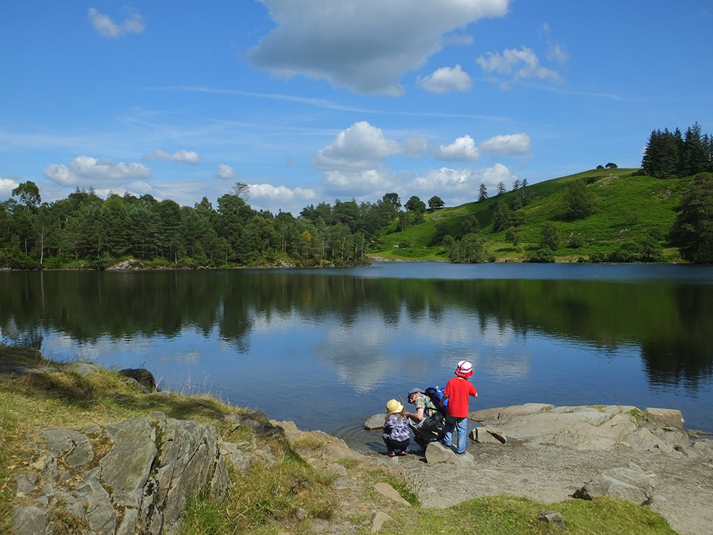 Tarn Hows, Lake District