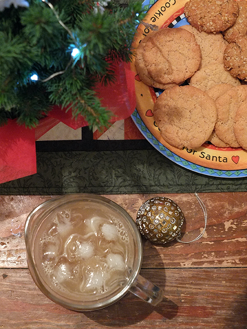 Ginger Beer and cookies made in the Thermocook