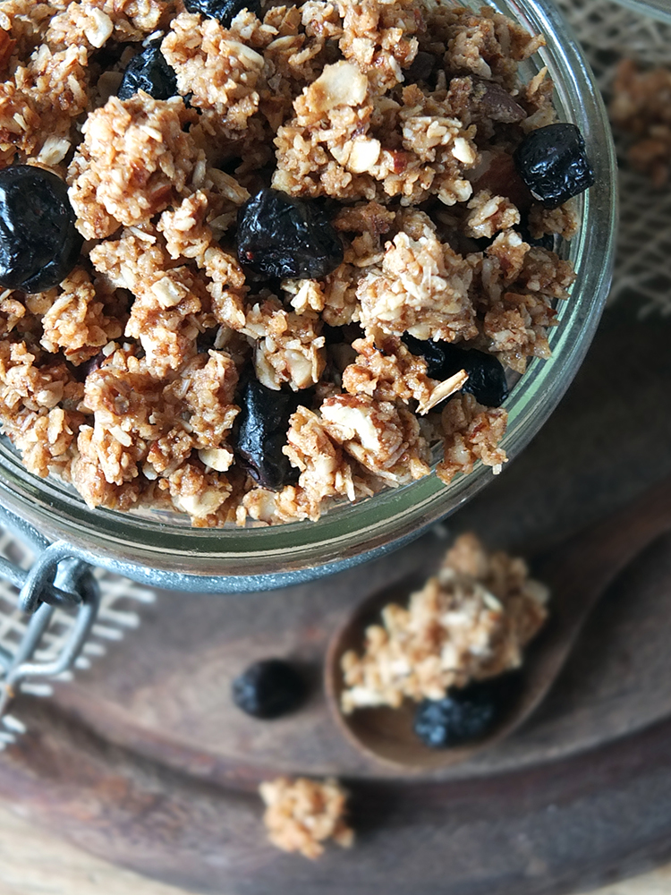 Coconut & Almond Granola Clusters with Blueberries