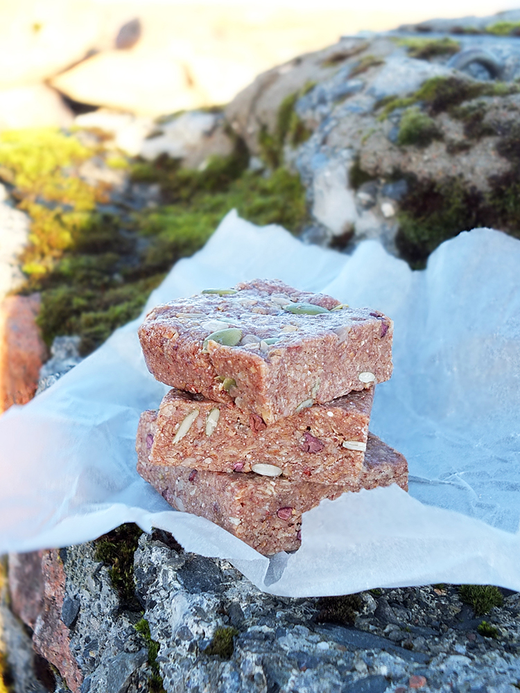 Superfood Plant Protein Energy Bars