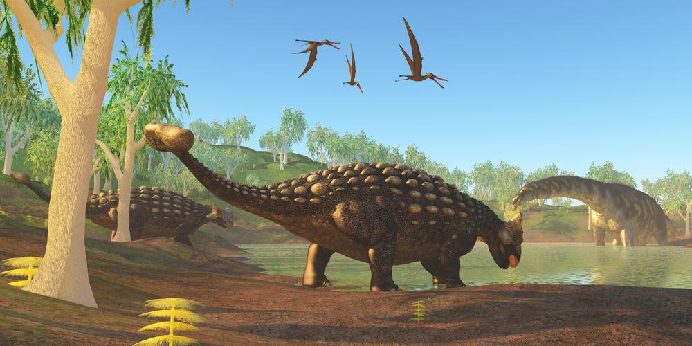 Ankylosaurus by Catmando
