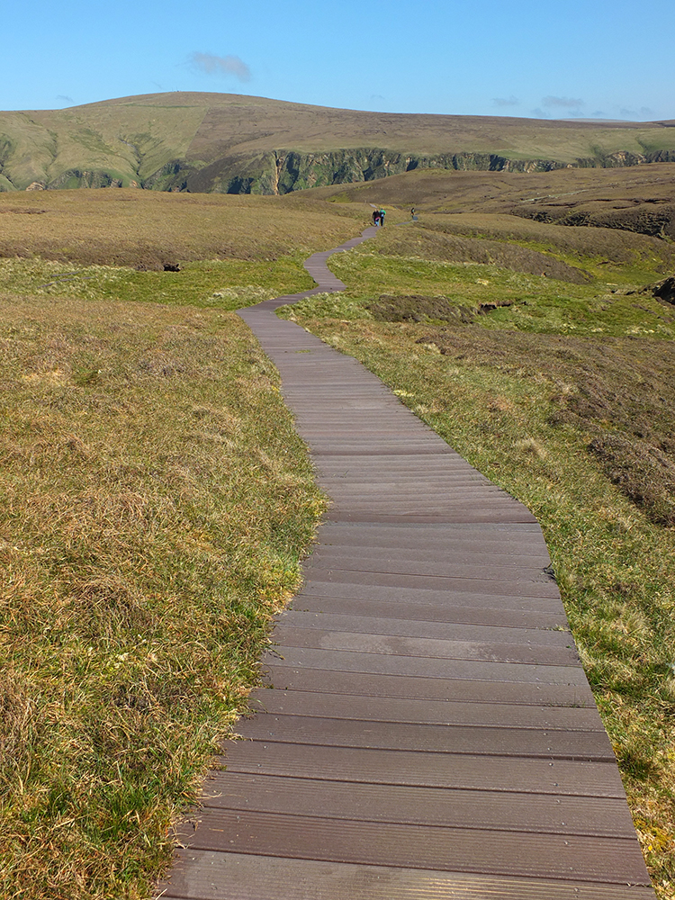 Hermaness Nature Reserve, Unst