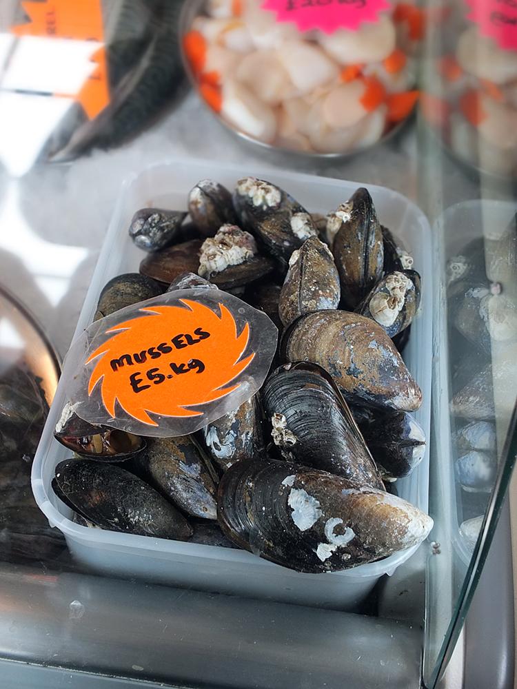 Bertolli - Blydoit Mussels