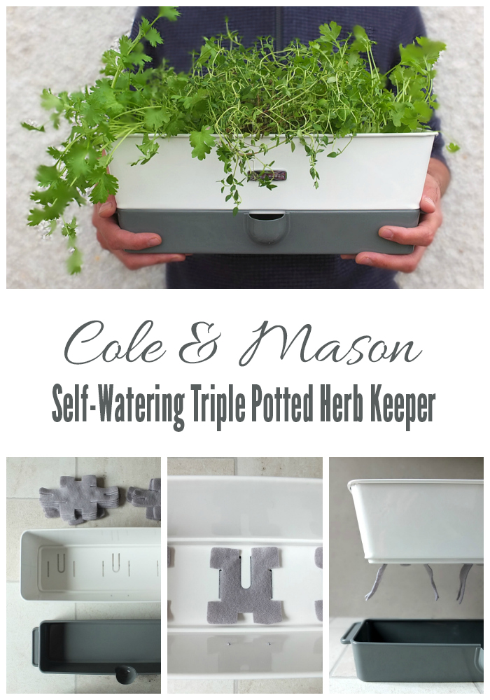 Cole and Mason Self-Watering Triple Potted Herb Keeper
