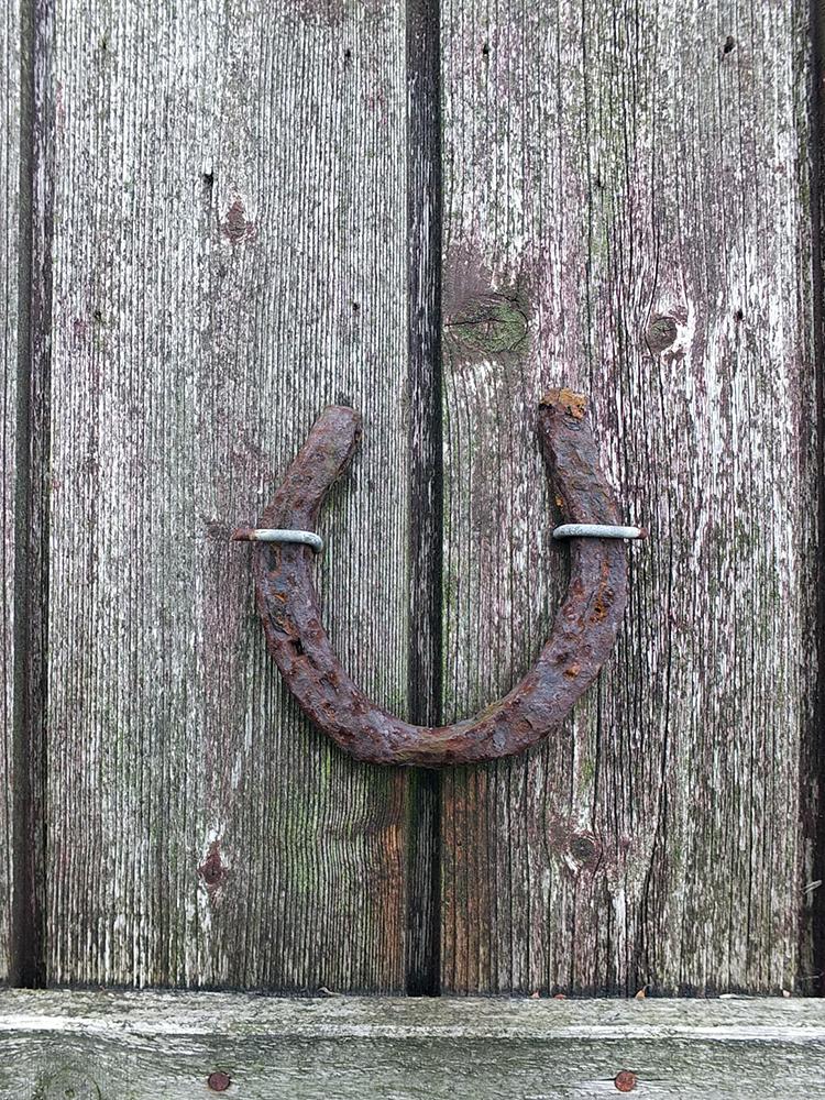 Rusty Horse Shoe - Marsali Taylor's barn