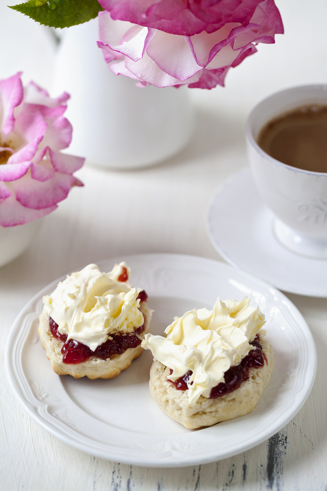 Scone with Clotted Cream - image source Shutterstock - Copyright Magdanatka