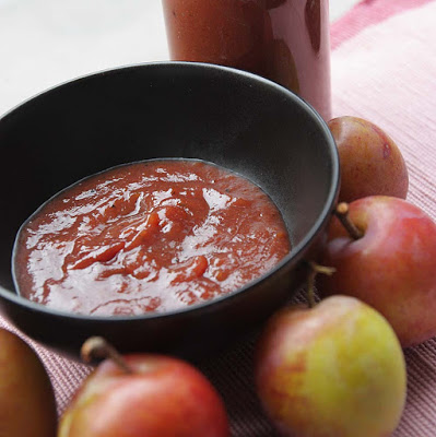 Easy Plum and Raspberry Ketchup by Allotment 2 Kitchen