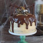 Chocolate and Peanut Butter Swirl Halloween Spider Cake