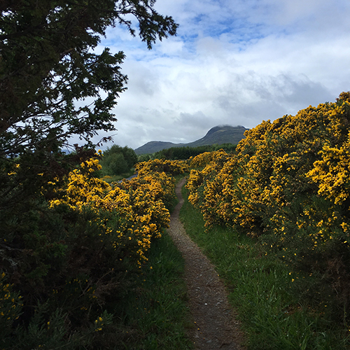 The Great Glen Way - Drumnadrochit