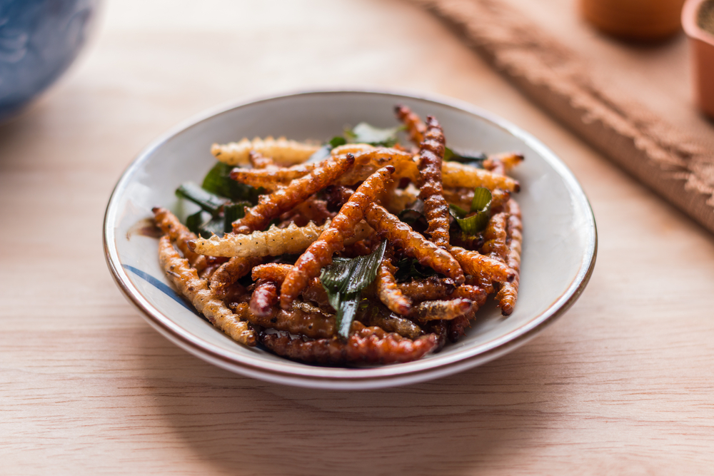 Fried Insects. Image via Shutterstock, image copyright Charoenkrung.Studio99