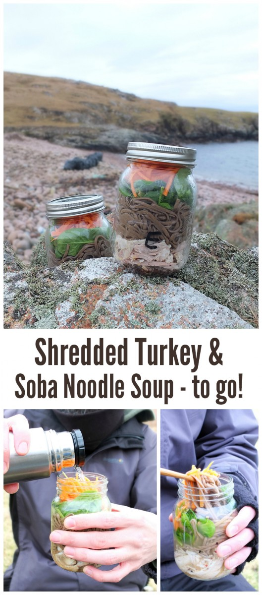 Shredded Turkey & Soba Noodle Soup - To Go! - Elizabeth's Kitchen ...