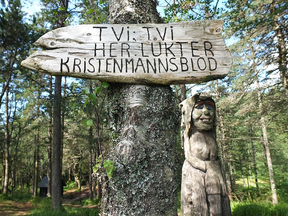 Trolls in Mount Floyen Bergen Forest