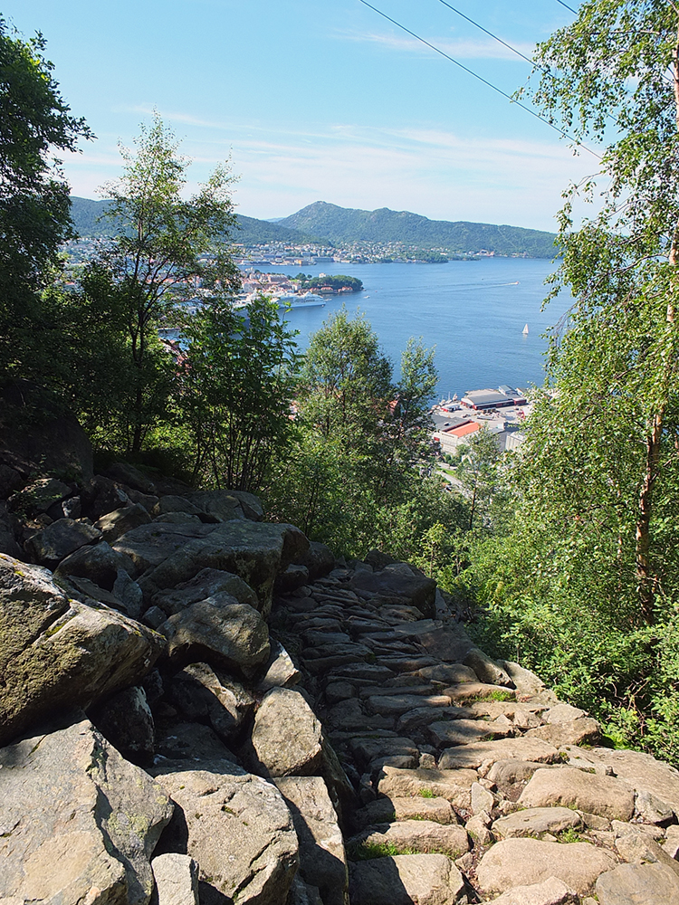 Stoltzeklevien Bergen 800 Steps
