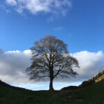 In the Footsteps of the Romans: Walking Hadrian's Wall