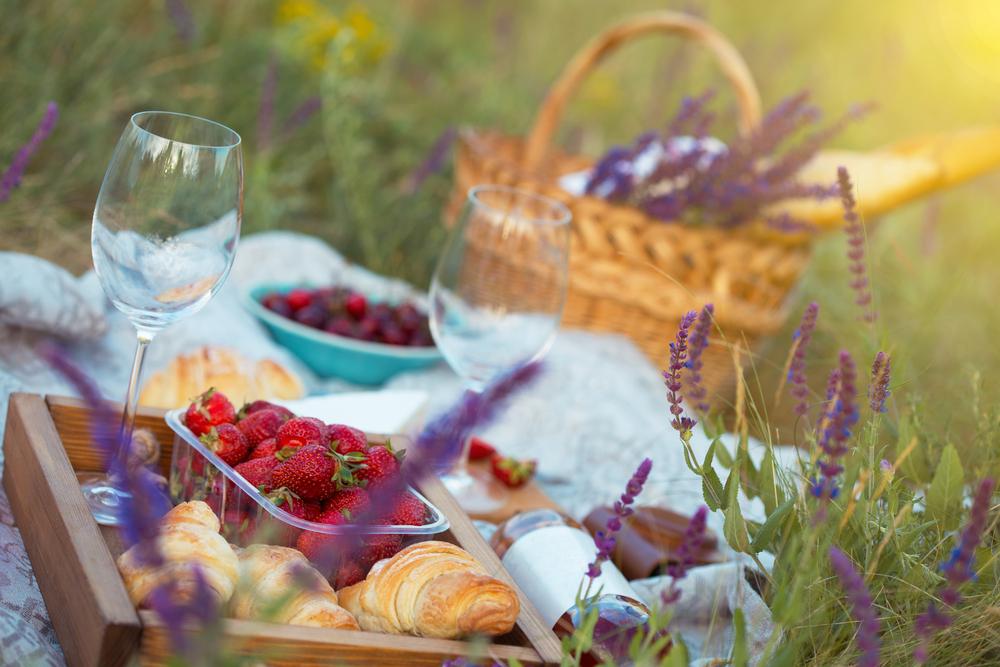 Summer Picnic By Mostovyi Sergii Igorevich