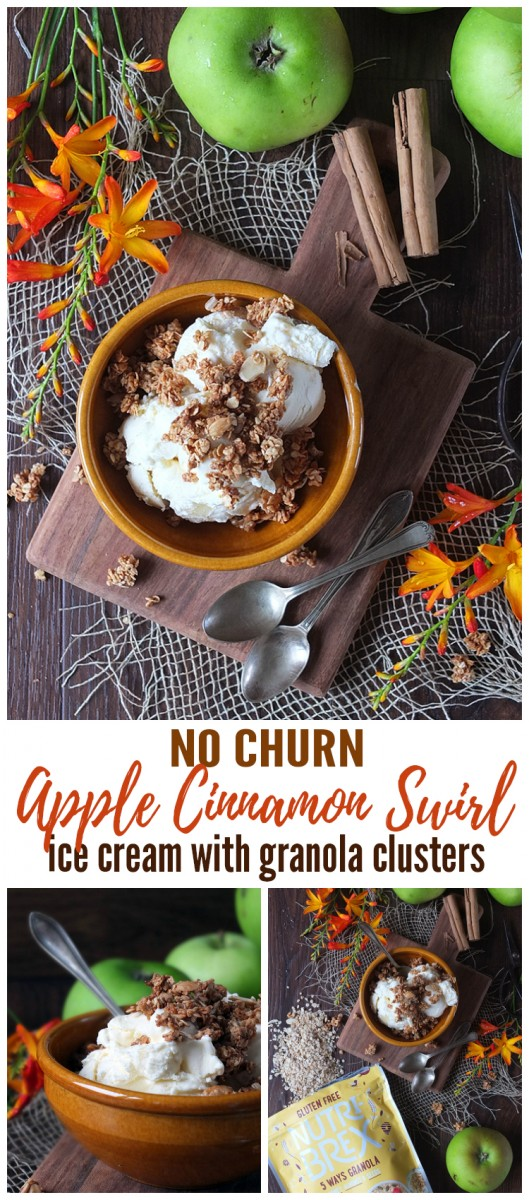 Apple Cinnamon Swirl No Churn Ice Cream with Granola Clusters