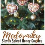 Medovníky: Slovak Spiced Honey Cookies Pinterest Image