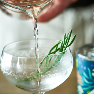 Dry Ginuary Martini by David Griffen