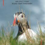 A complete 7 day Shetland Islands epic road trip itinerary #travel #shetland #shetlandislands