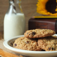 The Very Best Homemade Oatmeal Raisin Cookies