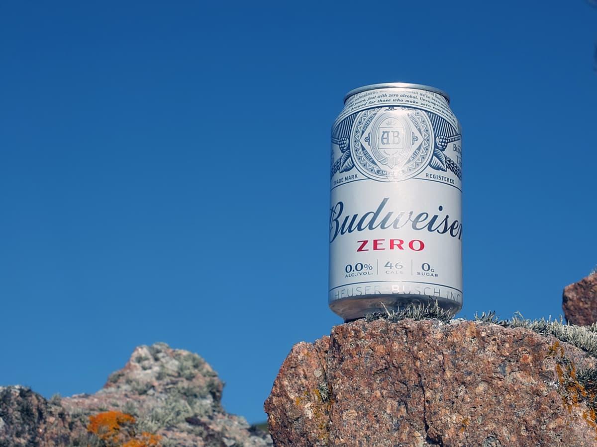Image of Budweiser tin with blue sky in the background.