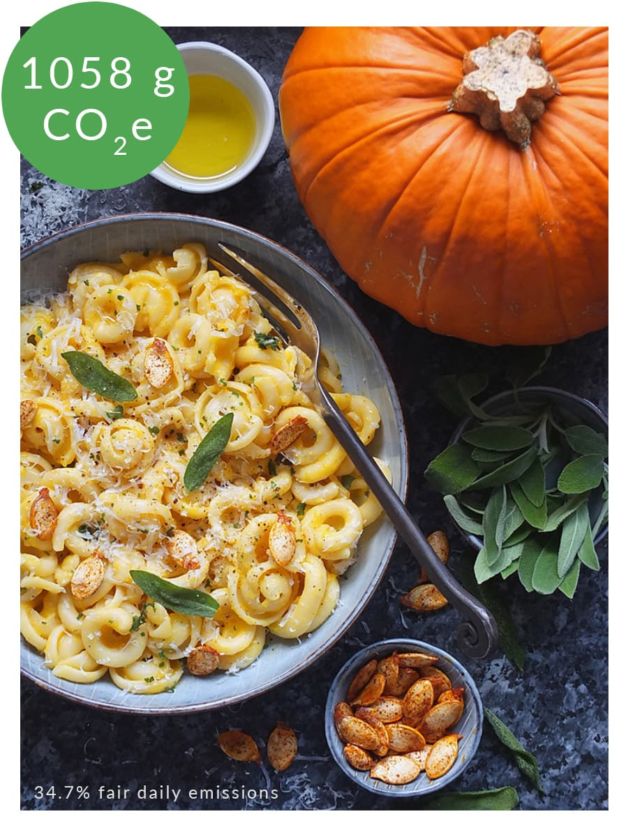 Picture of pumpkin pasta with environmental information labelled.