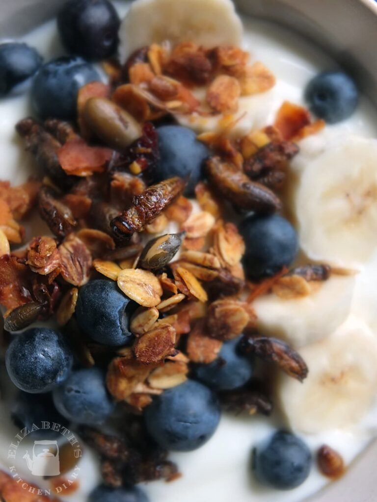 Image of whole dried cricket on top of crunchy granola, blueberries, sliced bananas and plain yoghurt.