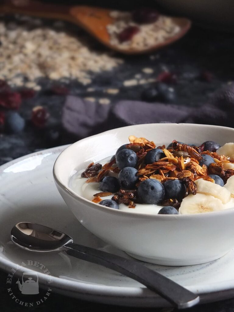 Photograph of a breakfast bowl with fruit, yoghurt and crunchy cricket granola.