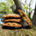 Oatmeal Raisin Spice Cookies & A Rope Swing