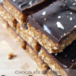 Chocolate Covered Peanut Protein Bars {vegan}