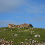 The Broch of Culswick and my 100th Geocache