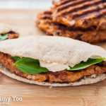 Chilli, parmesan and sundried tomato veggie bean patties