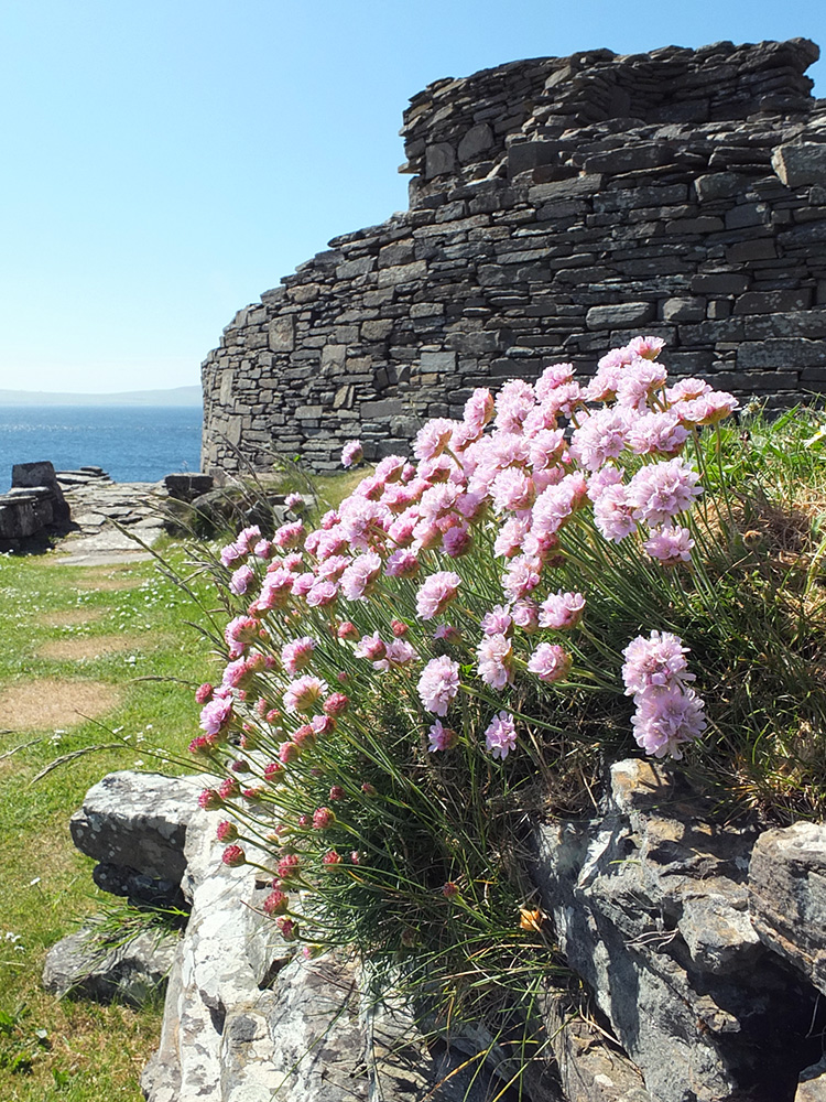 Mid Howe Broch, Orkney Islands