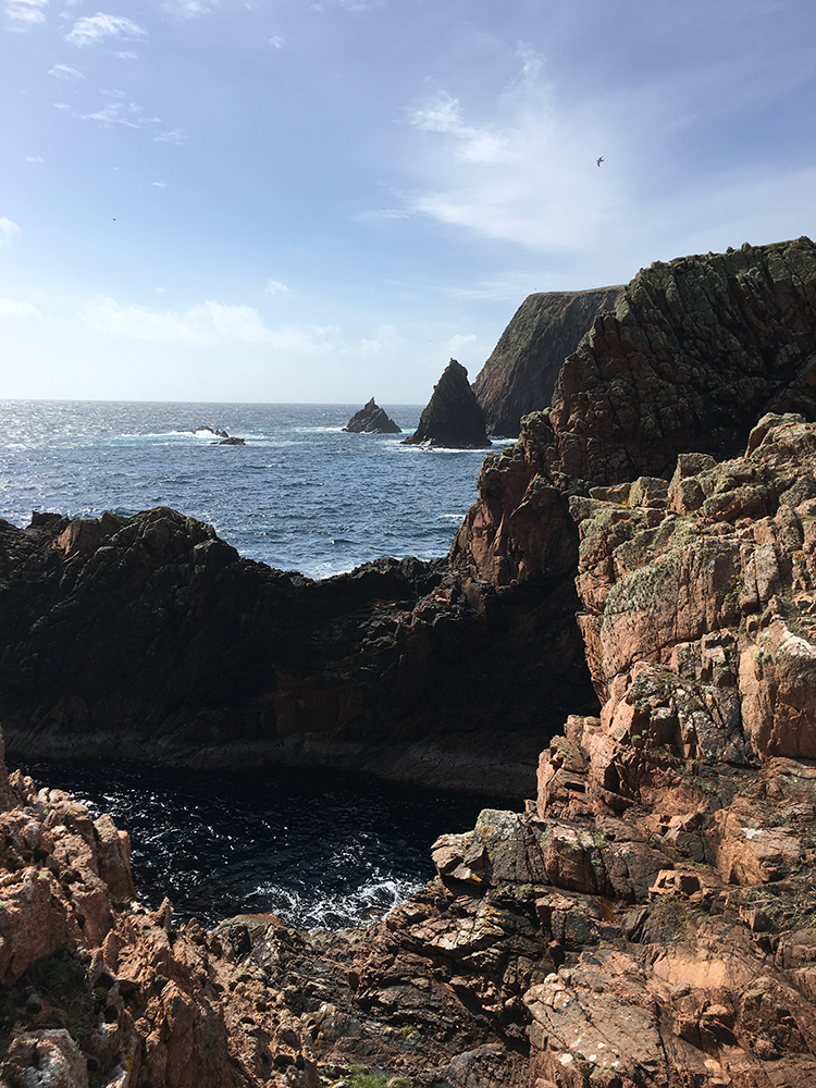 Shetland Cliffs